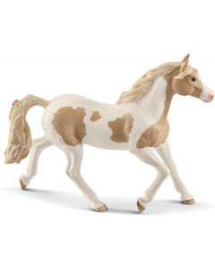 Giumenta Paint Horse - 2513884